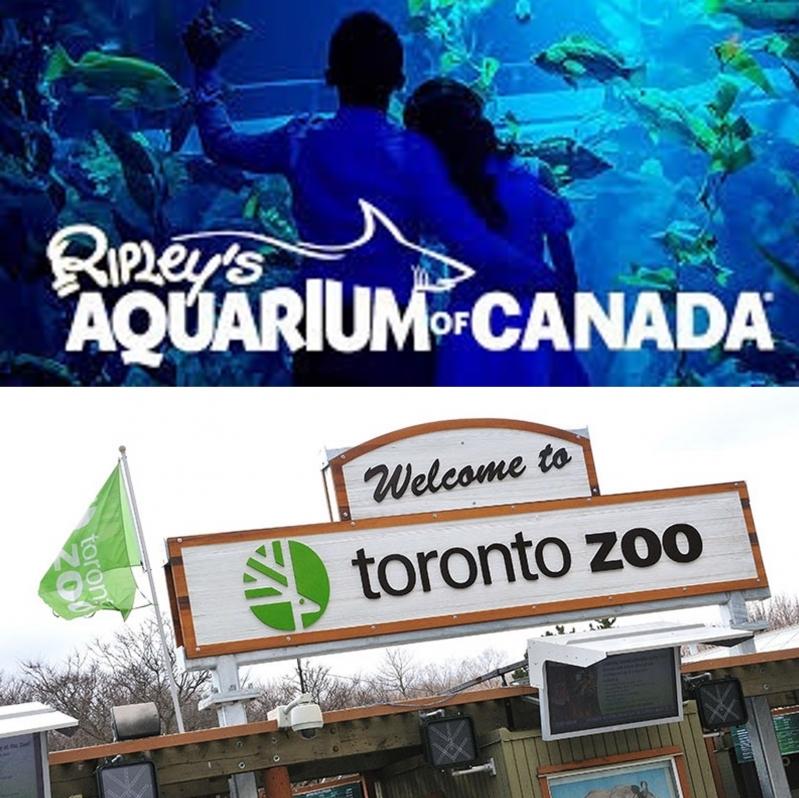 Ripley's Aquarium & Toronto Zoo